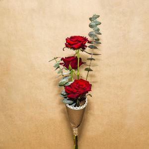 Regalar flores rosa rosalia