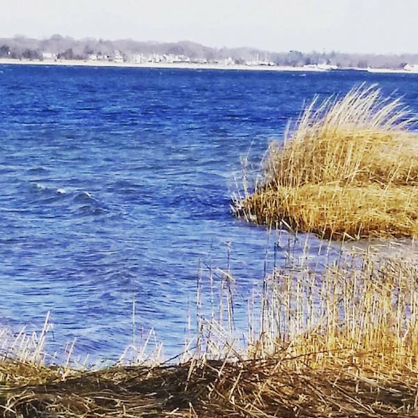 Jan. 3: Flanders Bay, 11 a.m.