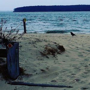 April 4, 10 a.m., crow's beach, New Suffolk