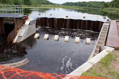 The new dam and fish ladder on the Peconic River at Edwards Avenue in Calverton.