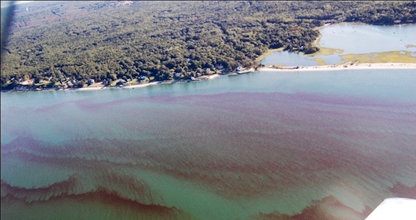 Rust tide caused by Cochlodinium in Flanders Bay, 2013. Photo courtesy of the U.S. Coast Guard Auxiliary