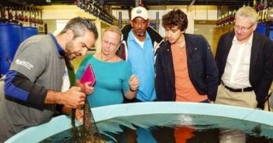 Dr. Konstantine Rountos shows representatives of Palau, The Bahamas, Italy, and Poland a bag of 'spat on shell' at the marine laboratory.   ShiRP courtesy photo