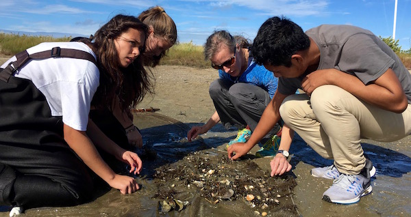 Southampton HS at Sebonic Inlet, with teacher Jennifer Keller, looking through their seining finds. In the net are shrimp, killies, silversides, mussels and slipper snails. | courtesy photo