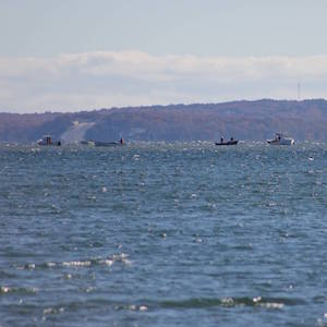 Nov. 7, 10:15 a.m. The scallop fleet west of Robins IslandNov. 7, 10:15 a.m.