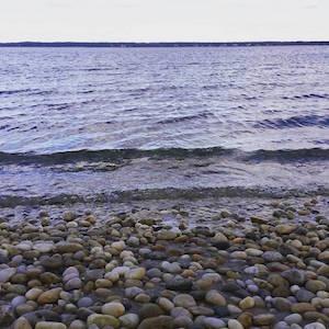Dec. 9, 2:20 p.m., Cedar Beach, Southold