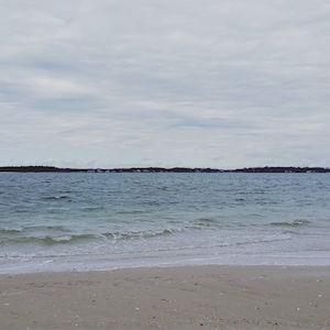 March 8, 11:30 a.m., Flanders Bay