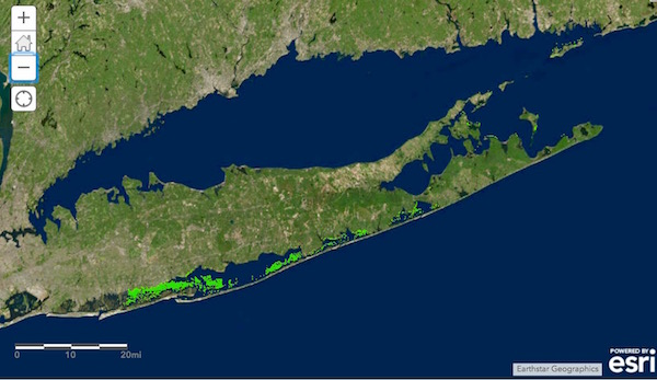 A brand new map using data from three conservation organizations to show eelgrass beds throughout Long Island's estuaries.