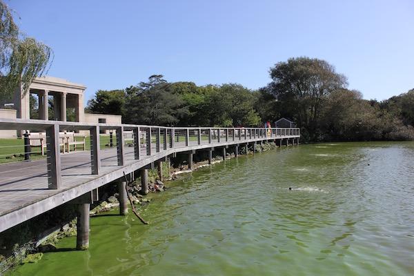 A blue-green algae bloom in Southampton's Lake Agawam in September of 2018.