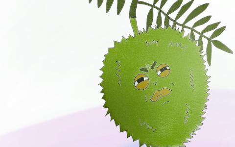 peculiar-produce-durian