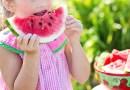Alimentación en verano