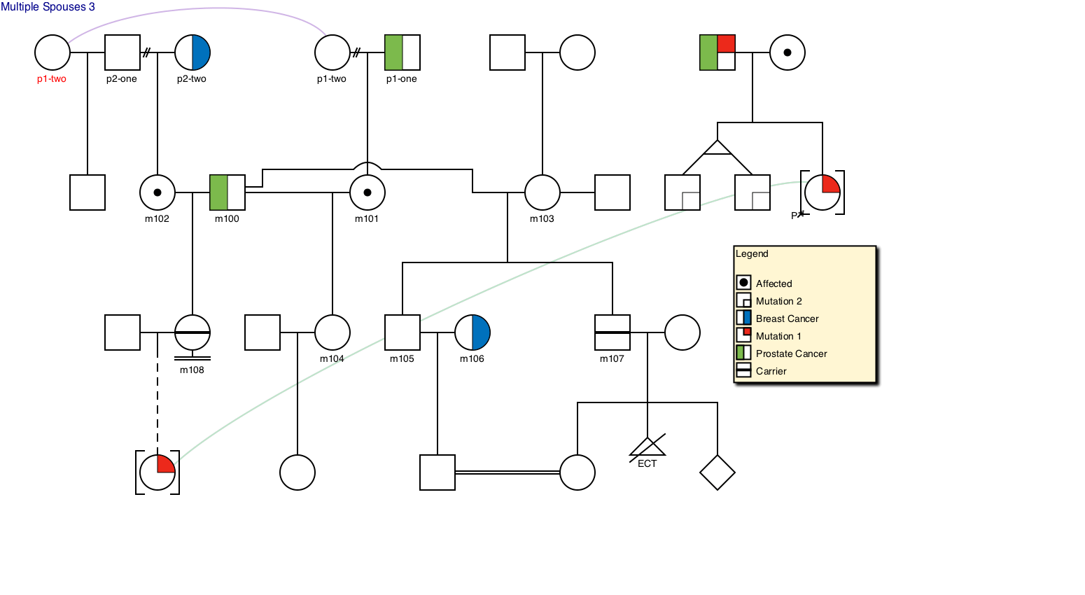 Genial Pedigree Draw Pedigree Drawing Software Genetic
