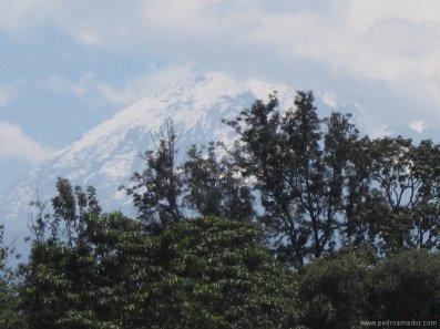 TANZANIA-Arusha Kilimanjaro