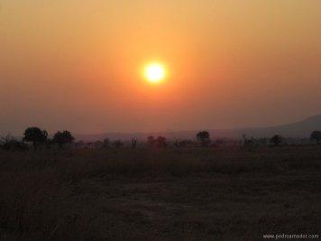 TANZANIA-Atardecer sabana