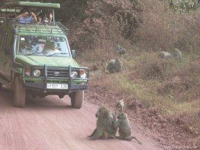 TANZANIA-Incidencia trafico