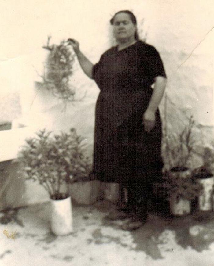 Manuela geraneos 1960-web