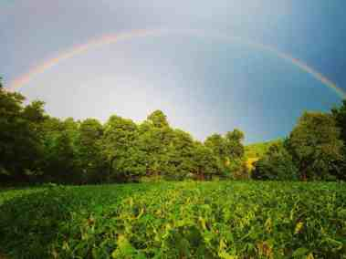 Rainbow near Spring Grove, PA