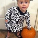 101 Dalmatians Family Costumes