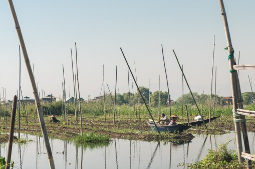 Stranded on water - Inle Lake