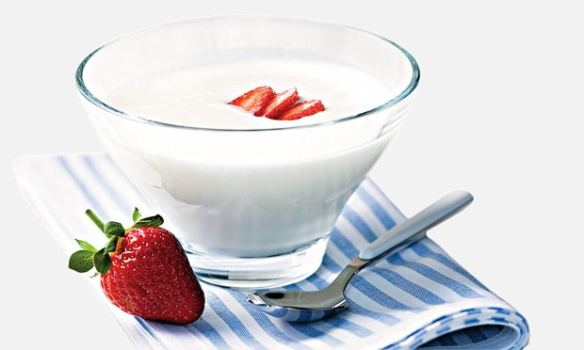 Iogurte Caseiro 06