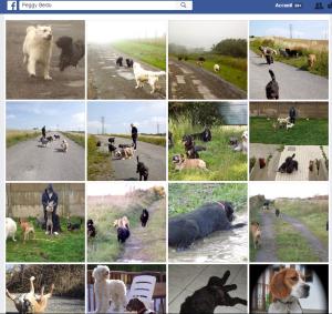 facebook album pension