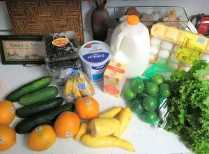 Groceries for under $20