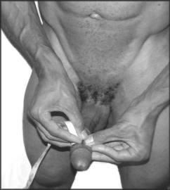 measuring erect penis girth