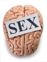 better sex brain