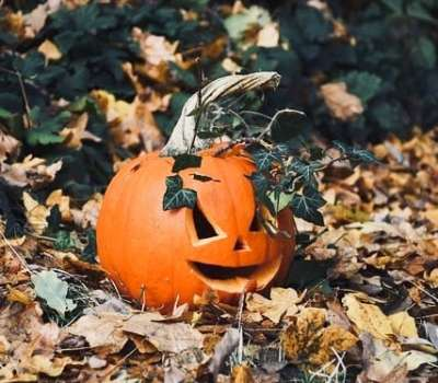 Amazing (and Easy) Halloween Decorations for Your Garden