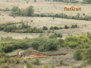"""""""Павла Чука"""" со кралската греобница"""