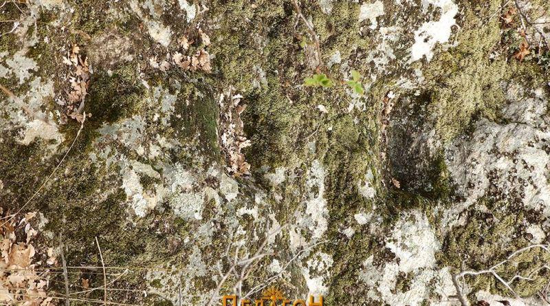 Мали скали на северниот профил