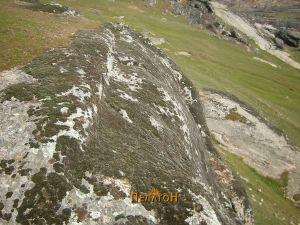 Правилно зарежана карпа на источниот дел