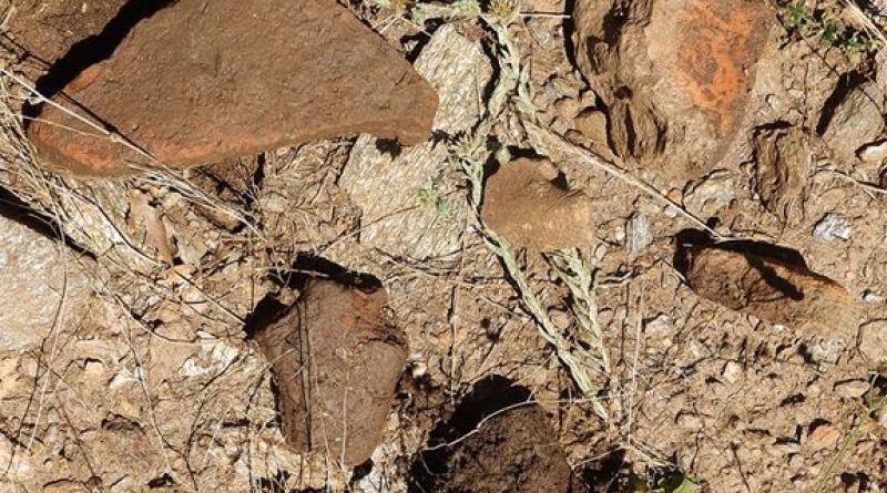 Фрагменти од керамика по теренот на ридот