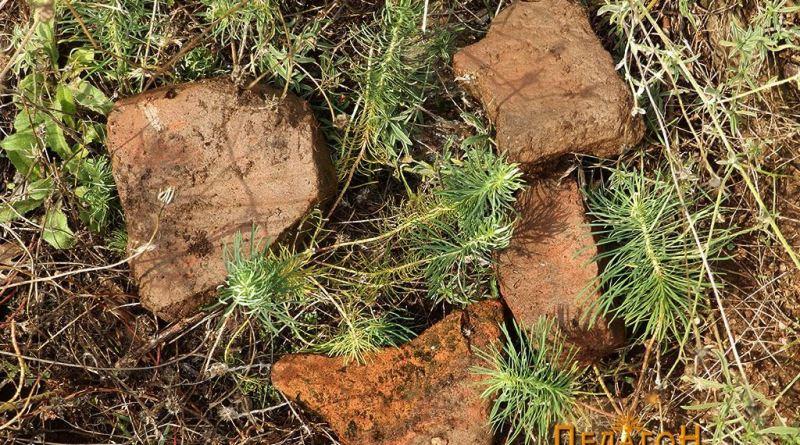 """Фрагменти од тегули - доказ за старат градба на ридот """"Атанавчица"""""""