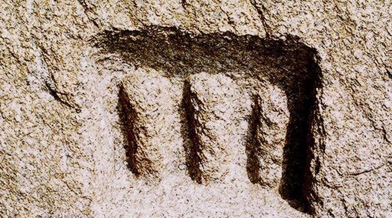 Тризначниот симбол во малата ниша