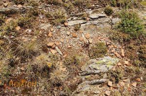 Керамика по површината на планината
