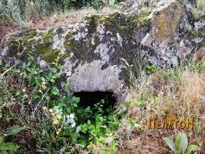 Гробница 2 - обрасната во капини