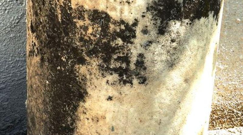 "Фрагмент од мермерен столб пред селската црква ""Св. Димитрија"""