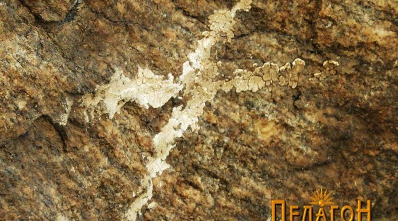 """Крстовидна форма на профилот на карпата на """"Чардак"""" од северозапдната страна"""