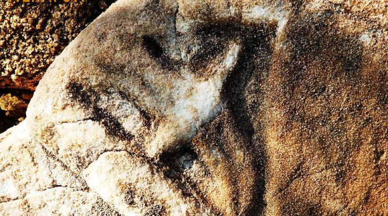 Детал со форма на птица од украсената плоча