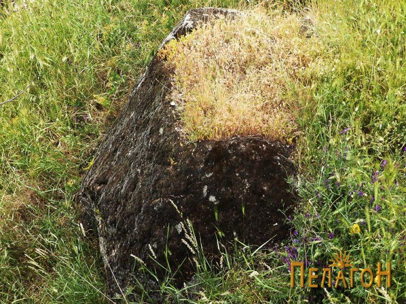 """Карпа со правоаголно корито северозападно од """"Кукуделица"""""""
