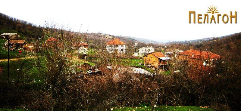 Дел од селото Дрен