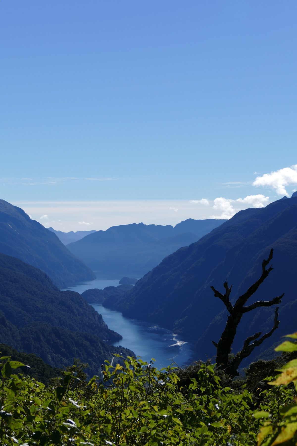 View into (just part of) Doubtful Sound from top of Wilmot Pass. All photos copyright Doug Spencer.