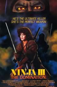 Ninja III: La dominación