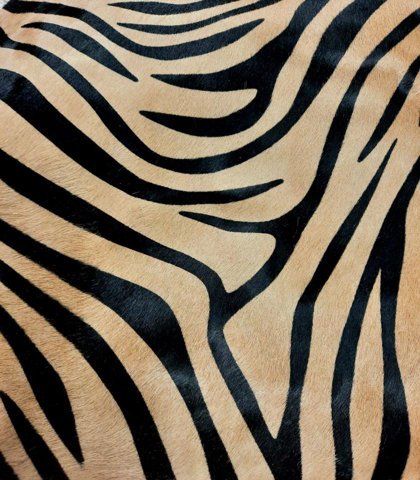 cavallino-zebra