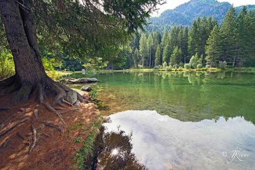 in-riva-al-lago-dei-caprioli