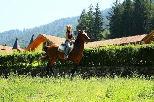 passeggiate-centro-equitazione-pellizzano