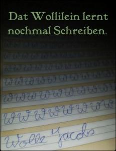 Wolle Pelz lernt nochmal schreiben - pelzblog