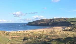 Freshwater Bay and Burrows