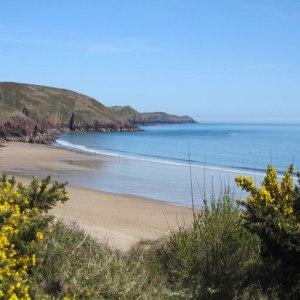 Freshwater Bay, Pembrokeshire