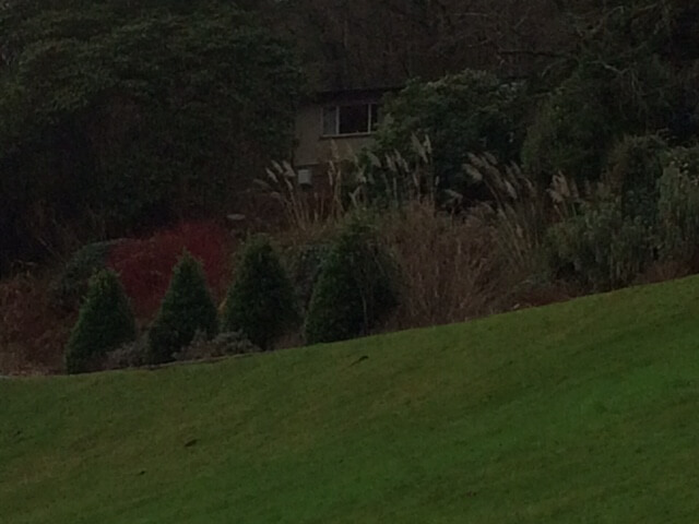 A picture of the grounds of Plas Tan y Bwlch
